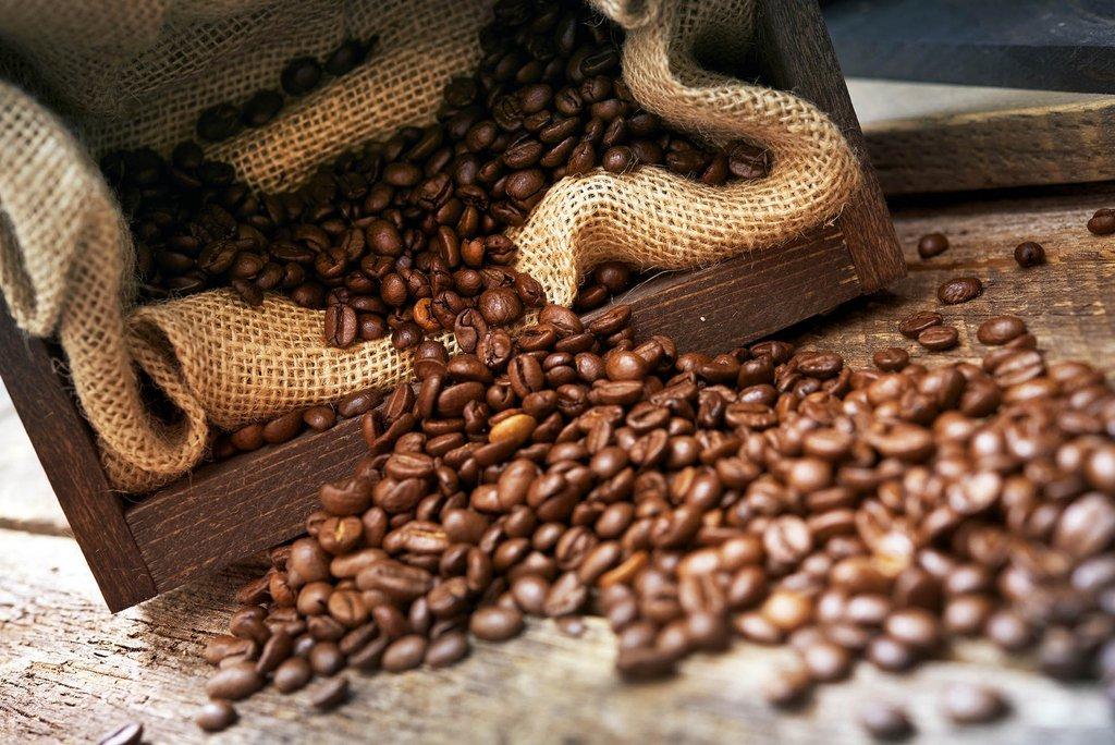 Kofeino yra ne tik kavos pupelėse